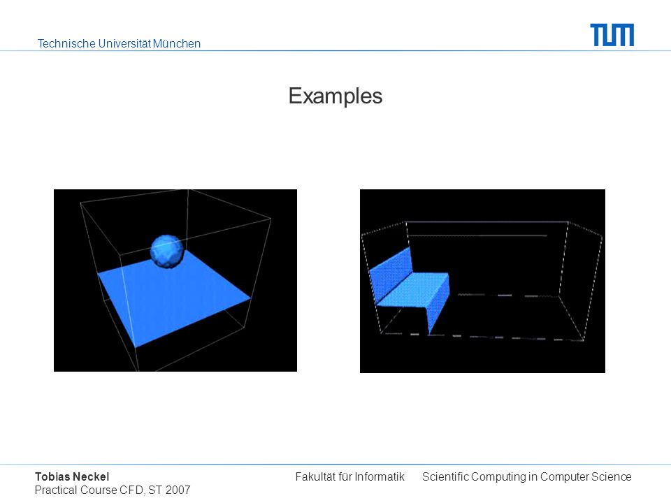 Technische Universität München Tobias Neckel Fakultät für Informatik Scientific Computing in Computer Science Practical Course CFD, ST 2007 Examples