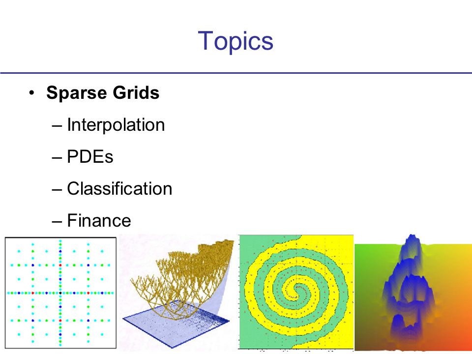 Topics Sparse Grids –Interpolation –PDEs –Classification –Finance