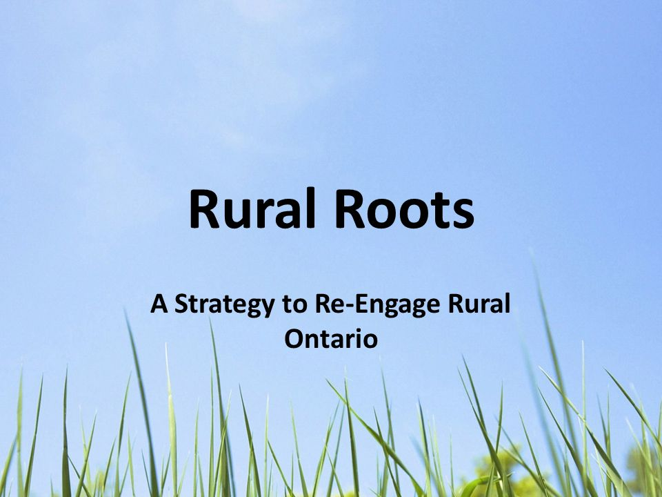 Rural Roots A Strategy to Re-Engage Rural Ontario