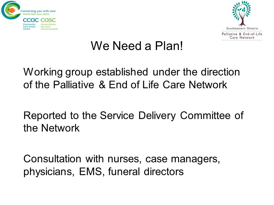 We Need a Plan! Working group established under the direction of the Palliative & End of Life Care Network Reported to the Service Delivery Committee