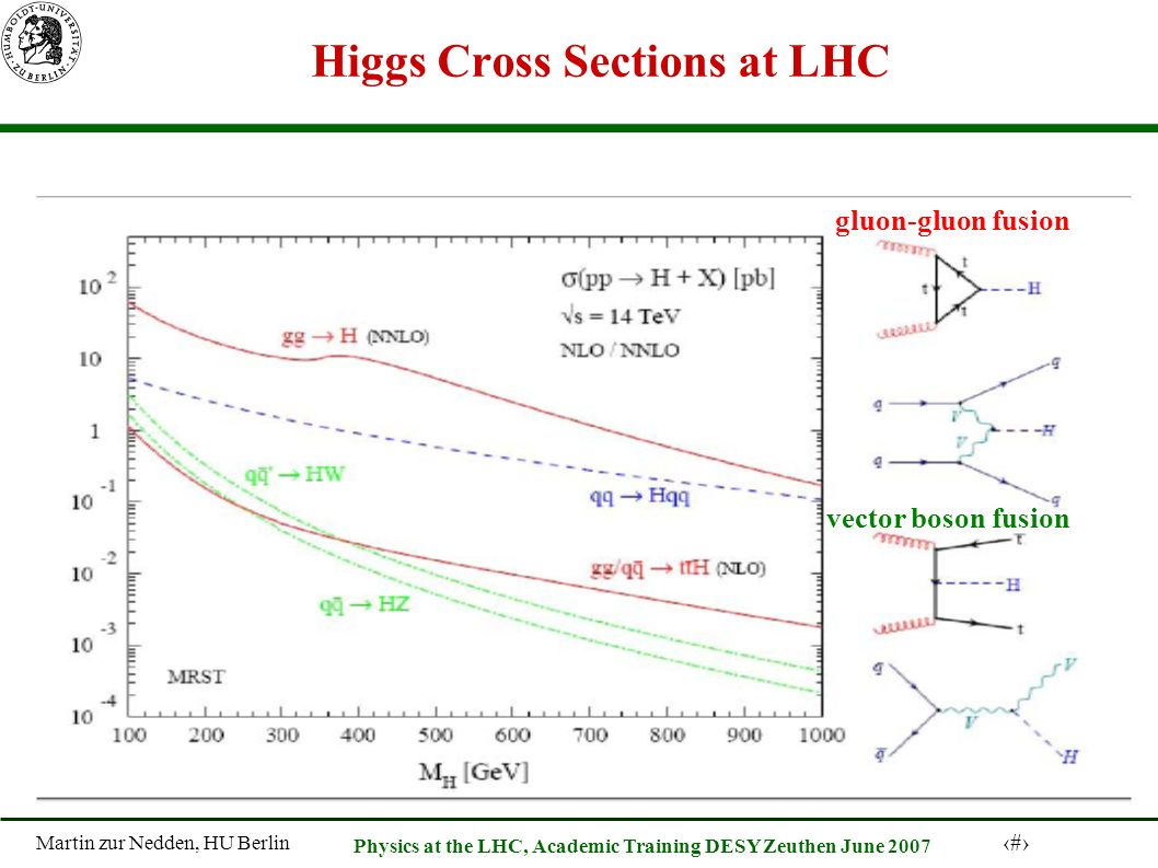Martin zur Nedden, HU Berlin 18 Physics at the LHC, Academic Training DESY Zeuthen June 2007 Higgs Cross Sections at LHC gluon-gluon fusion vector boson fusion