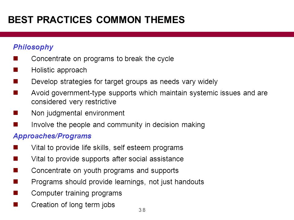 BEST PRACTICES COMMON THEMES Philosophy Concentrate on programs to break the cycle Holistic approach Develop strategies for target groups as needs vary widely Avoid government-type supports which maintain systemic issues and are considered very restrictive Non judgmental environment Involve the people and community in decision making Approaches/Programs Vital to provide life skills, self esteem programs Vital to provide supports after social assistance Concentrate on youth programs and supports Programs should provide learnings, not just handouts Computer training programs Creation of long term jobs 3.8