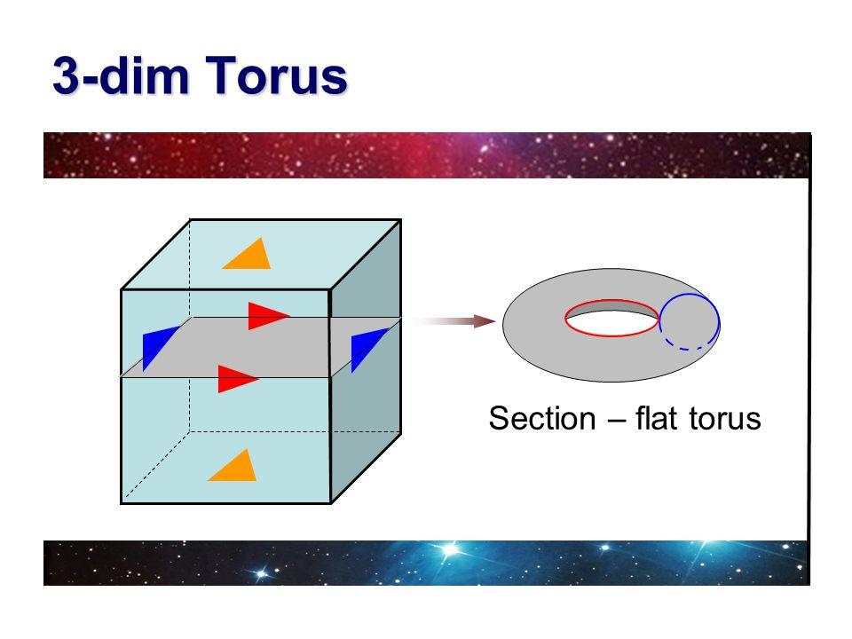 3-dim Torus Section – flat torus