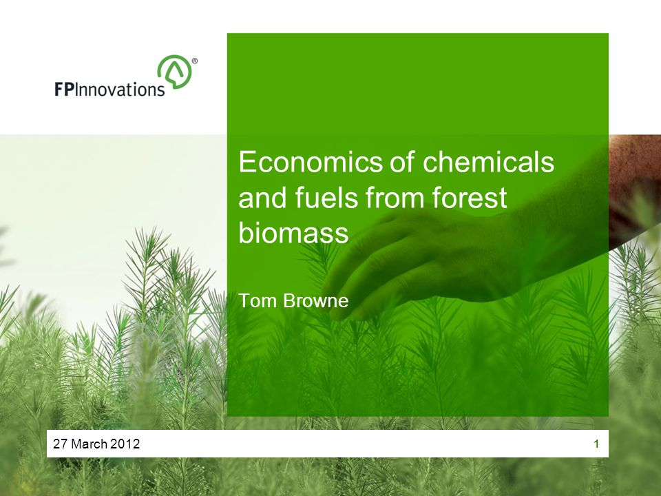 27 March 2012 1 Economics of chemicals and fuels from forest biomass Tom Browne