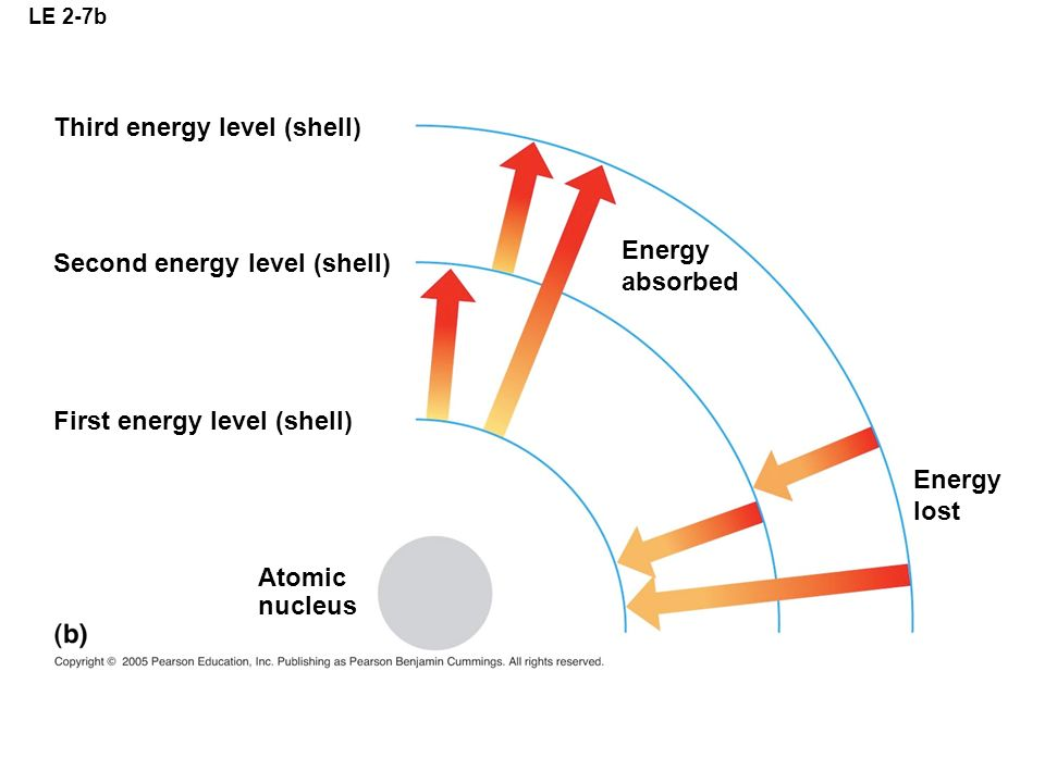 LE 2-7b Third energy level (shell) Second energy level (shell) First energy level (shell) Atomic nucleus Energy absorbed Energy lost