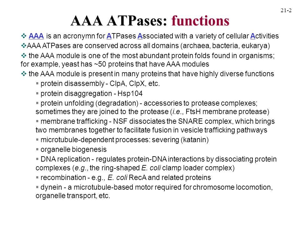katanin: summary of action 21-11 Model for microtubule severing by katanin.