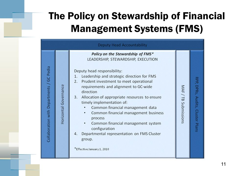 11 The Policy on Stewardship of Financial Management Systems (FMS) 11