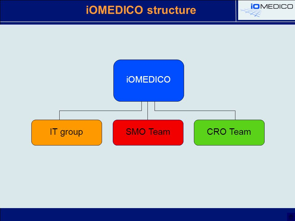 iOMEDICO structure iOMEDICO IT groupSMO TeamCRO Team