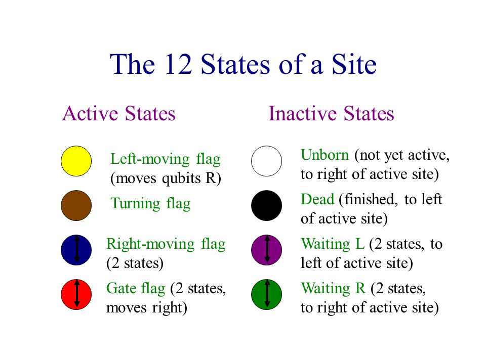 The 12 States of a Site Active StatesInactive States Unborn (not yet active, to right of active site) Dead (finished, to left of active site) Left-moving flag (moves qubits R) Turning flag Right-moving flag (2 states) Gate flag (2 states, moves right) Waiting L (2 states, to left of active site) Waiting R (2 states, to right of active site)