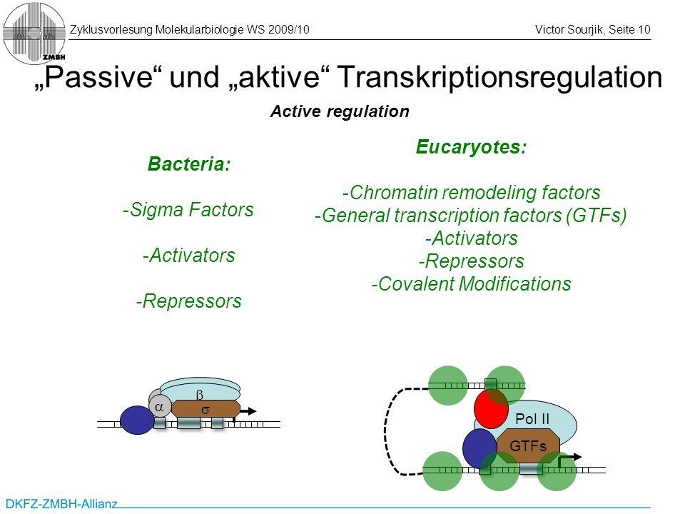 Zyklusvorlesung Molekularbiologie WS 2009/10Victor Sourjik, Seite 10 Passive und aktive Transkriptionsregulation Active regulation Bacteria: -Sigma Fa