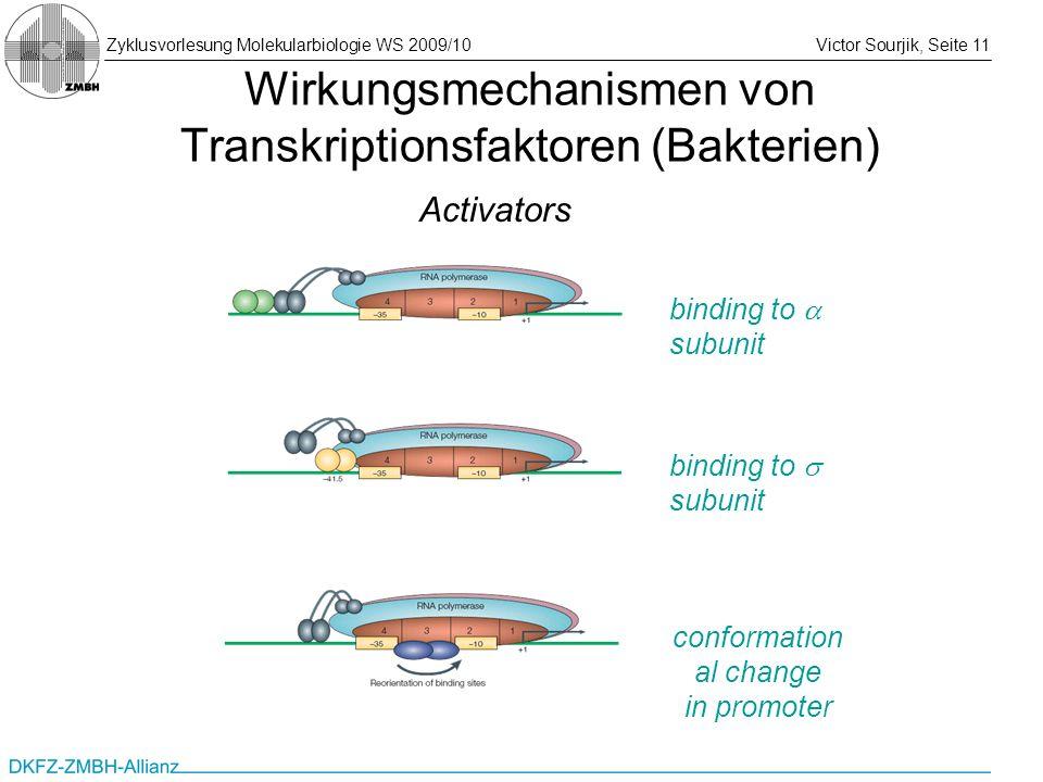 Zyklusvorlesung Molekularbiologie WS 2009/10Victor Sourjik, Seite 11 Wirkungsmechanismen von Transkriptionsfaktoren (Bakterien) binding to subunit con