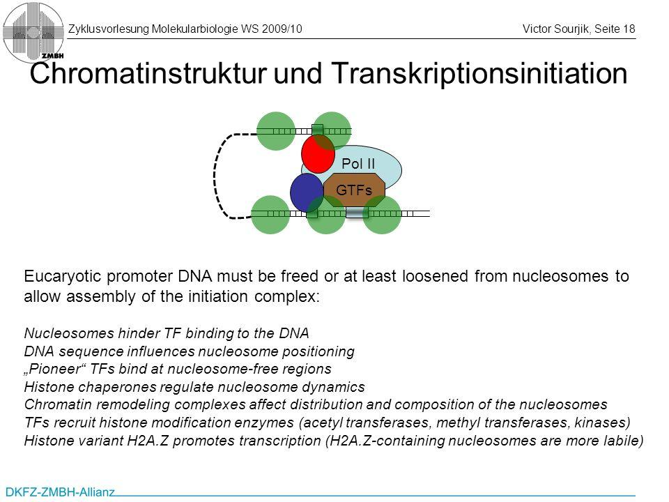 Zyklusvorlesung Molekularbiologie WS 2009/10Victor Sourjik, Seite 18 Chromatinstruktur und Transkriptionsinitiation Eucaryotic promoter DNA must be fr