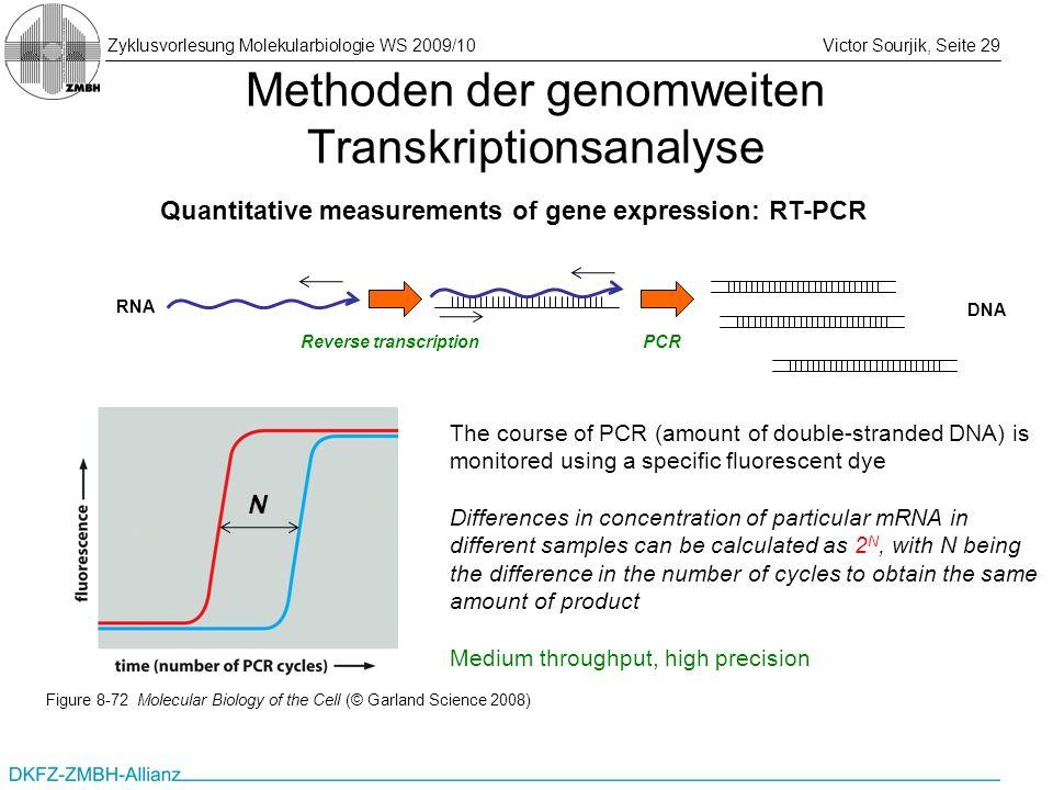 Zyklusvorlesung Molekularbiologie WS 2009/10Victor Sourjik, Seite 29 Methoden der genomweiten Transkriptionsanalyse Quantitative measurements of gene