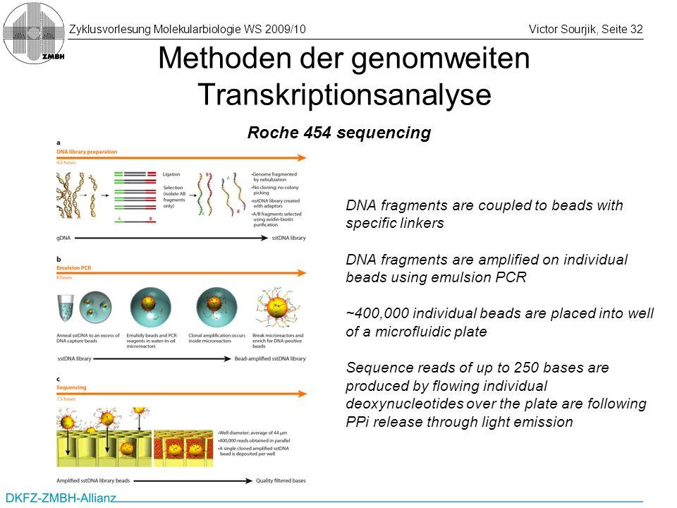 Zyklusvorlesung Molekularbiologie WS 2009/10Victor Sourjik, Seite 32 Methoden der genomweiten Transkriptionsanalyse DNA fragments are coupled to beads