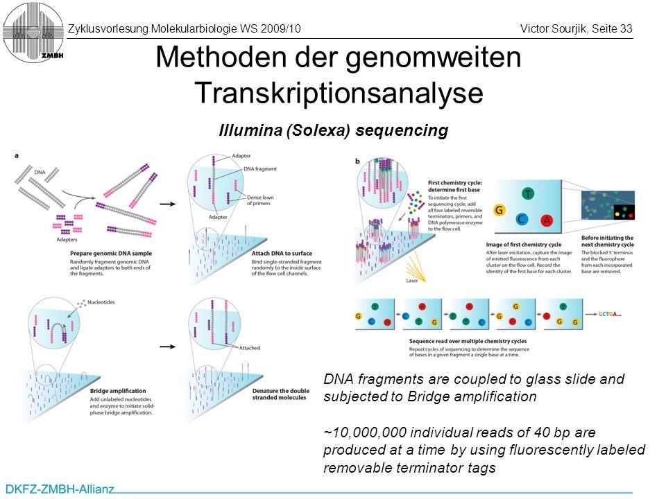 Zyklusvorlesung Molekularbiologie WS 2009/10Victor Sourjik, Seite 33 Methoden der genomweiten Transkriptionsanalyse Illumina (Solexa) sequencing DNA f