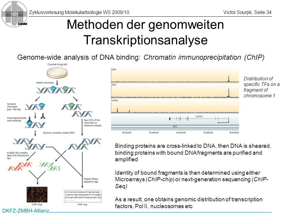 Zyklusvorlesung Molekularbiologie WS 2009/10Victor Sourjik, Seite 34 Methoden der genomweiten Transkriptionsanalyse Genome-wide analysis of DNA bindin