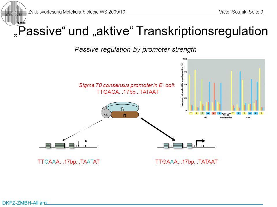Zyklusvorlesung Molekularbiologie WS 2009/10Victor Sourjik, Seite 9 Passive und aktive Transkriptionsregulation Passive regulation by promoter strengt