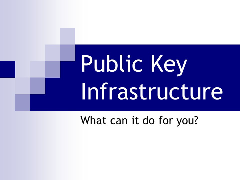 Public Key Infrastructure What can it do for you?