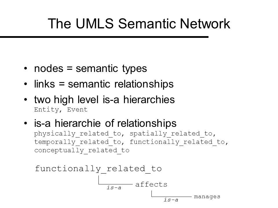 The UMLS Semantic Network (excerpt)
