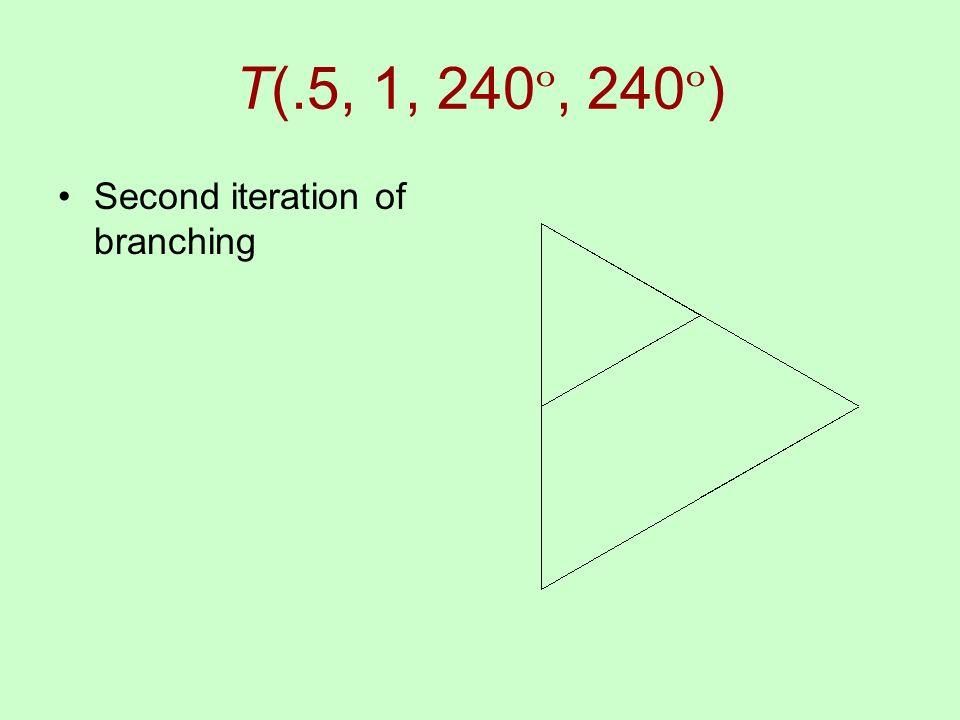 T(.5, 1, 240 º, 240 º ) Second iteration of branching