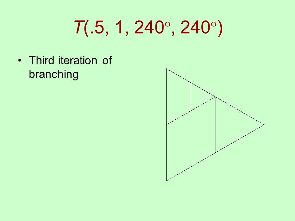 T(.5, 1, 240 º, 240 º ) Third iteration of branching