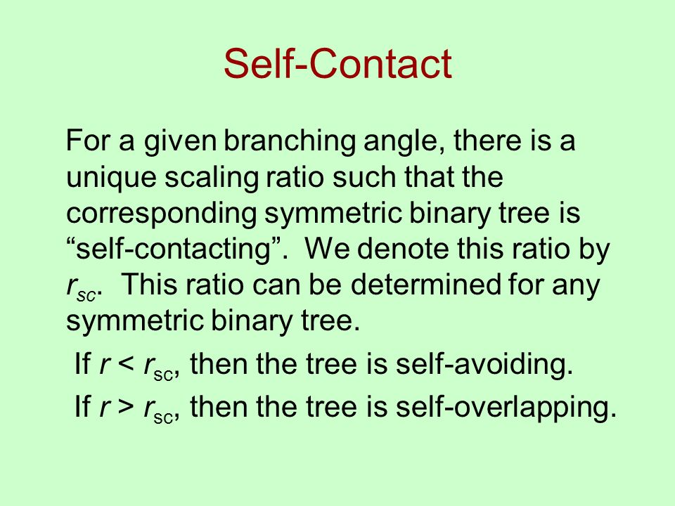 Self-Contact For a given branching angle, there is a unique scaling ratio such that the corresponding symmetric binary tree is self-contacting.