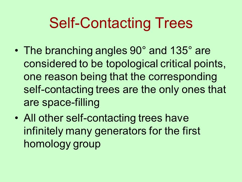 Self-Contacting Trees The branching angles 90° and 135° are considered to be topological critical points, one reason being that the corresponding self-contacting trees are the only ones that are space-filling All other self-contacting trees have infinitely many generators for the first homology group