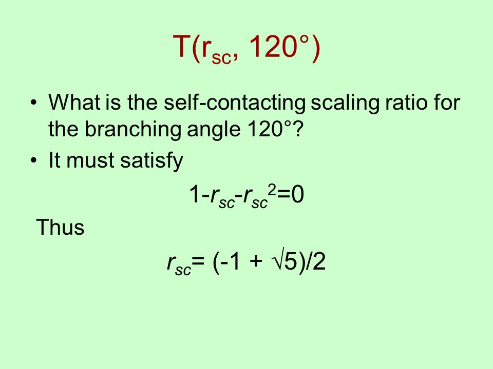 What is the self-contacting scaling ratio for the branching angle 120°.