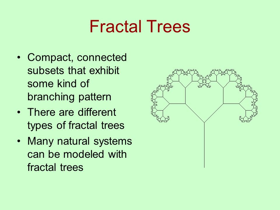 Fractal Trees Compact, connected subsets that exhibit some kind of branching pattern There are different types of fractal trees Many natural systems can be modeled with fractal trees