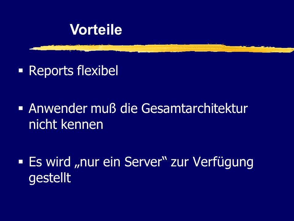 Reports flexibel Anwender muß die Gesamtarchitektur nicht kennen Es wird nur ein Server zur Verfügung gestellt Vorteile