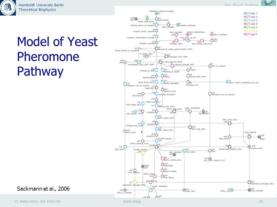 VL Netzwerke, WS 2007/08 Edda Klipp 26 Max Planck Institute Molecular Genetics Humboldt University Berlin Theoretical Biophysics Model of Yeast Pheromone Pathway Sackmann et al., 2006