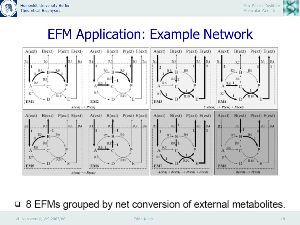 VL Netzwerke, WS 2007/08 Edda Klipp 18 Max Planck Institute Molecular Genetics Humboldt University Berlin Theoretical Biophysics EFM Application: Example Network