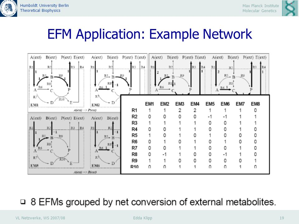 VL Netzwerke, WS 2007/08 Edda Klipp 19 Max Planck Institute Molecular Genetics Humboldt University Berlin Theoretical Biophysics EFM Application: Example Network