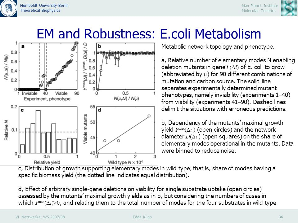 VL Netzwerke, WS 2007/08 Edda Klipp 36 Max Planck Institute Molecular Genetics Humboldt University Berlin Theoretical Biophysics EM and Robustness: E.coli Metabolism Metabolic network topology and phenotype.