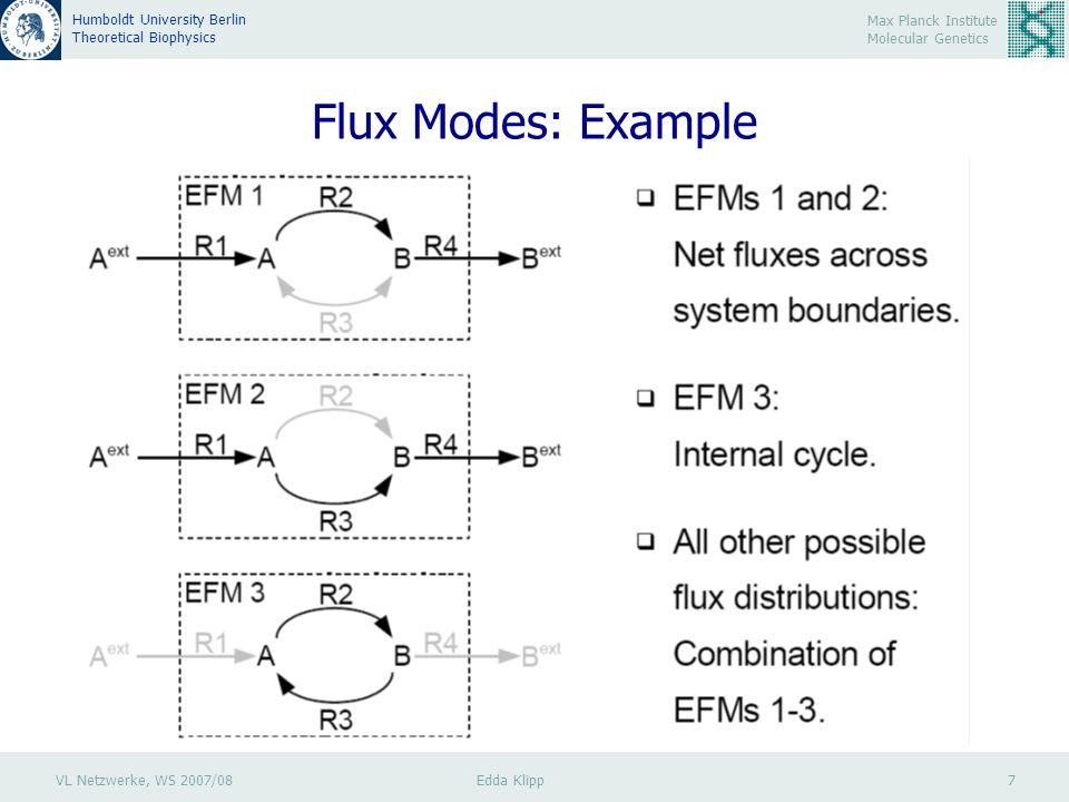 VL Netzwerke, WS 2007/08 Edda Klipp 7 Max Planck Institute Molecular Genetics Humboldt University Berlin Theoretical Biophysics Flux Modes: Example