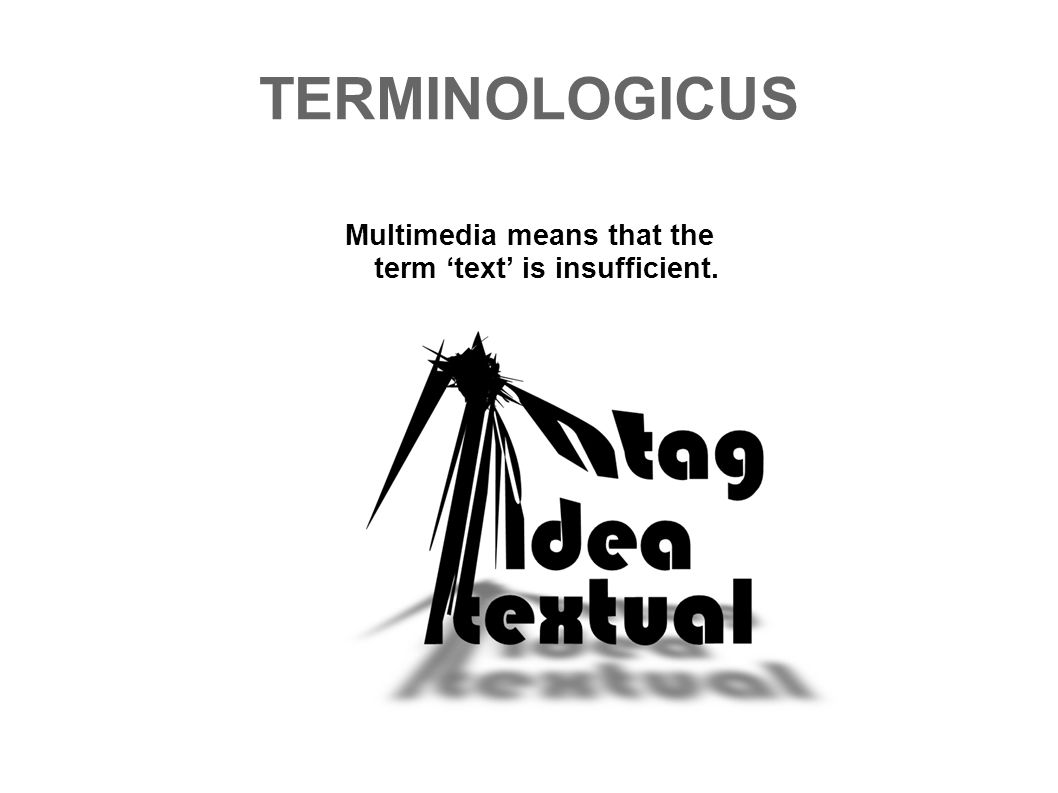 TERMINOLOGICUS Multimedia means that the term text is insufficient.