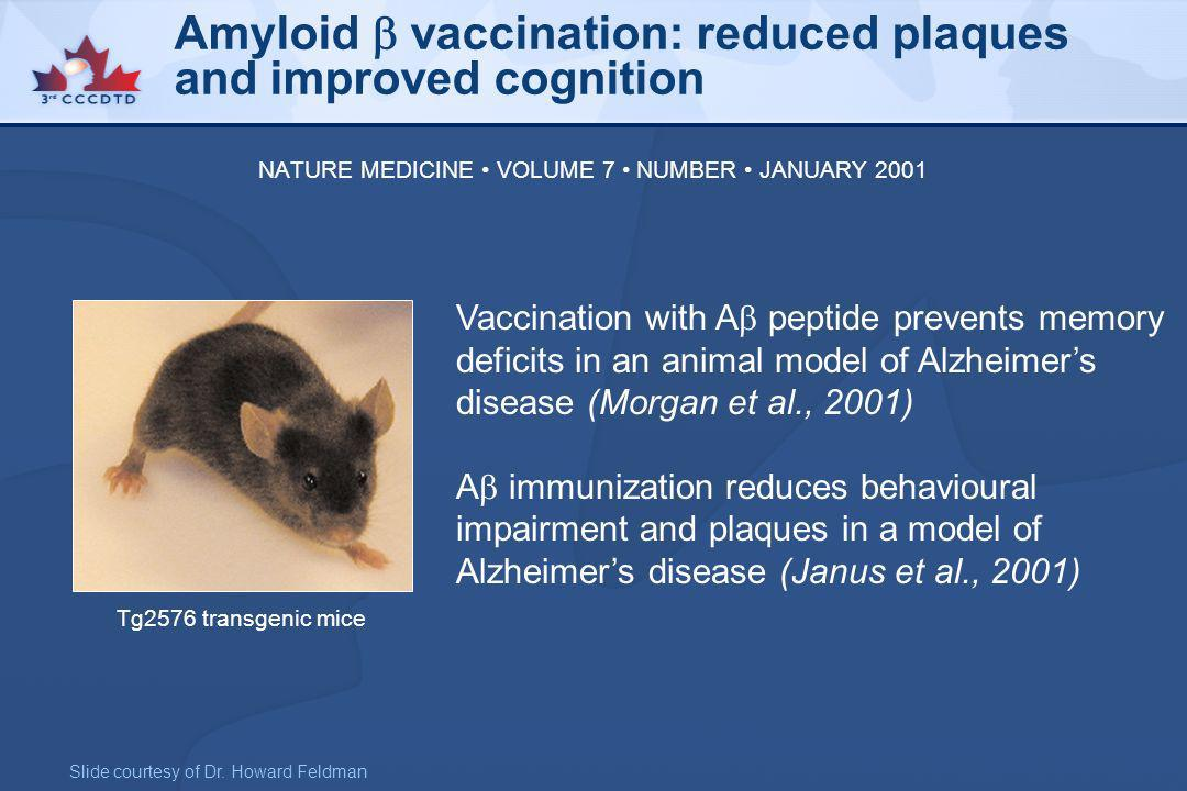 Vaccination with A peptide prevents memory deficits in an animal model of Alzheimers disease (Morgan et al., 2001) A immunization reduces behavioural