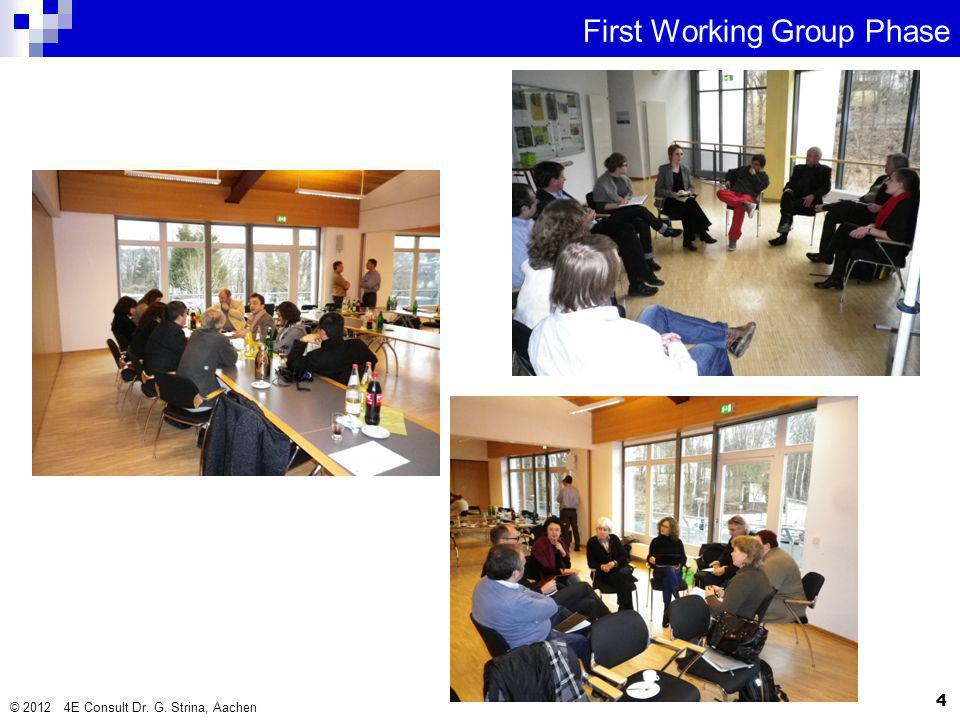 © 2012 4E Consult Dr. G. Strina, Aachen 4 First Working Group Phase