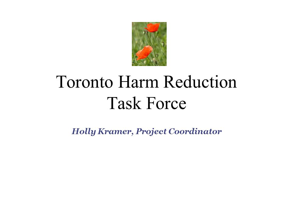 Toronto Harm Reduction Task Force Holly Kramer, Project Coordinator