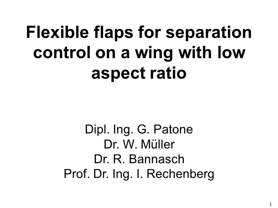 1 Flexible flaps for separation control on a wing with low aspect ratio Dipl. Ing. G. Patone Dr. W. Müller Dr. R. Bannasch Prof. Dr. Ing. I. Rechenber