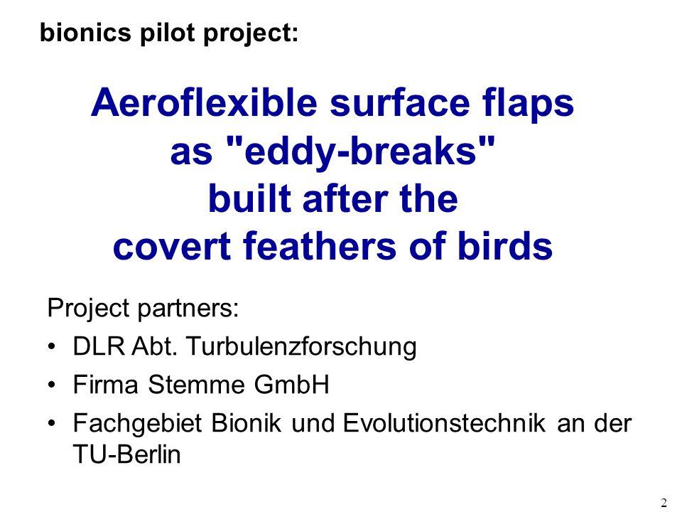 2 bionics pilot project: Aeroflexible surface flaps as