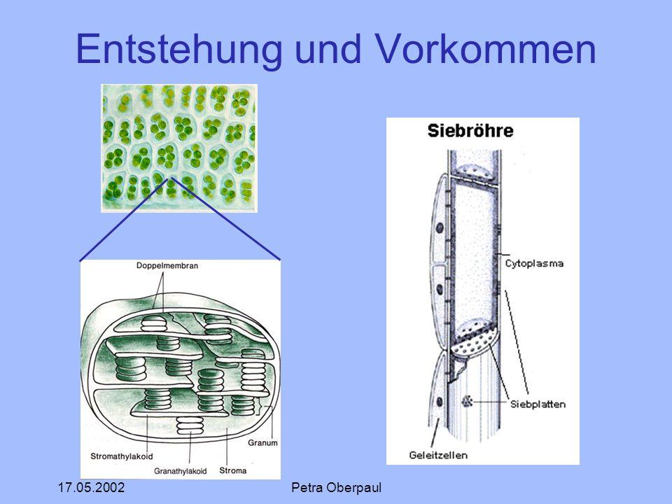 17.05.2002Petra Oberpaul Entstehung und Vorkommen