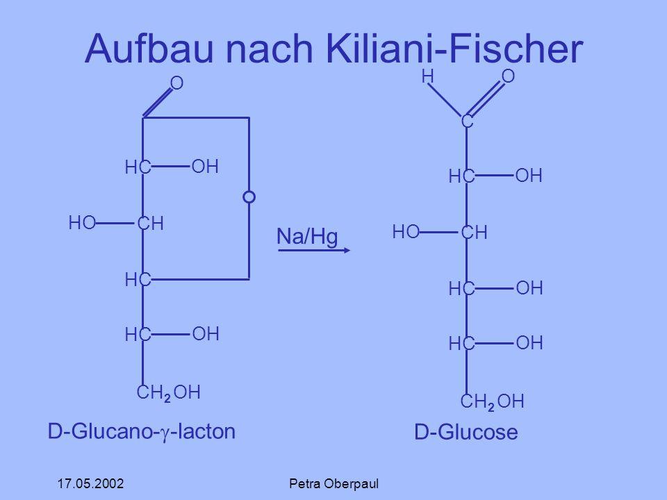 17.05.2002Petra Oberpaul Aufbau nach Kiliani-Fischer HC CH HC CH 2 OH OH HO OH D-Glucano- -lacton O Na/Hg C HC CH HC CH 2 OH H O OH HO OH D-Glucose
