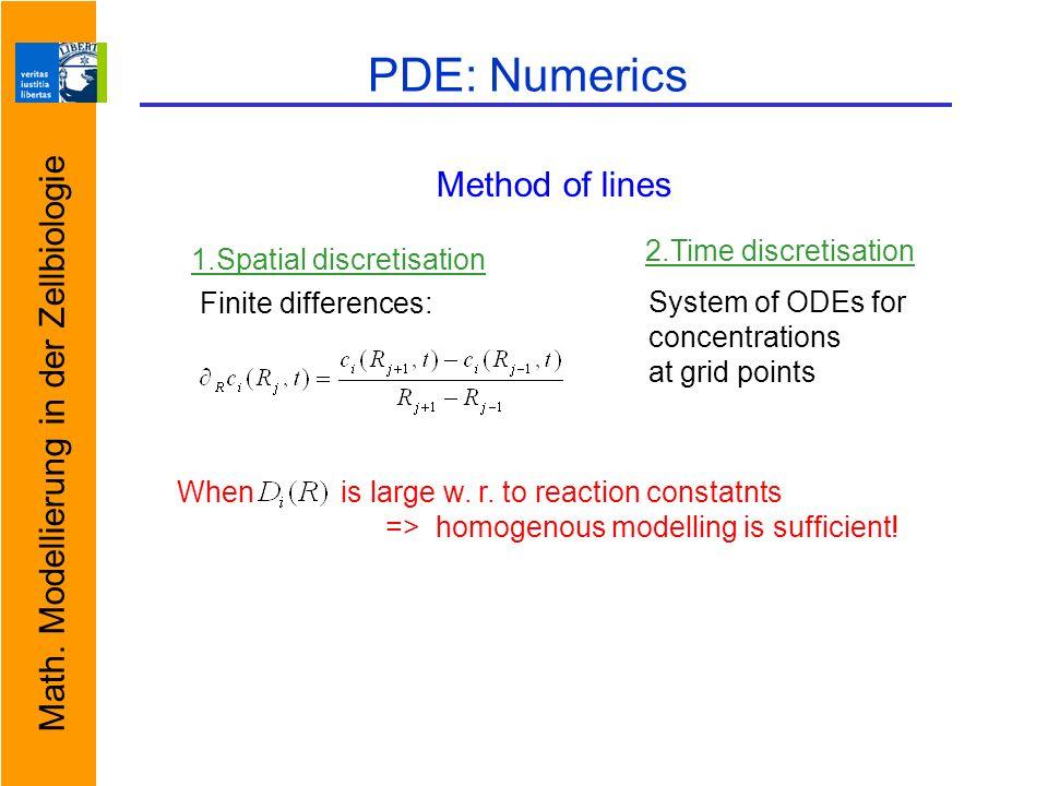 Math. Modellierung in der Zellbiologie PDE: Numerics When is large w.