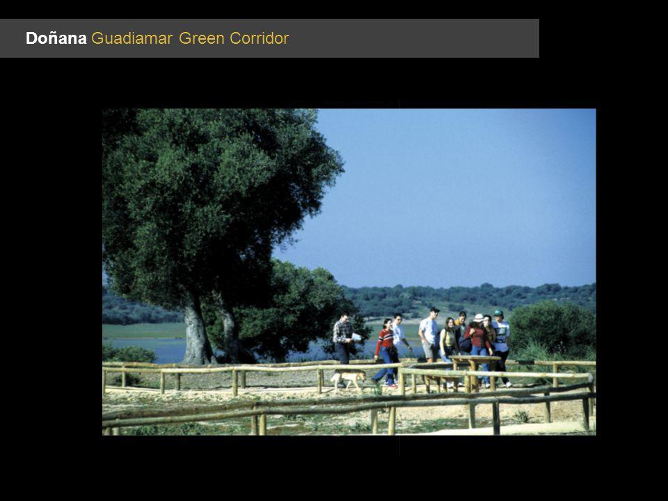 Doñana Guadiamar Green Corridor