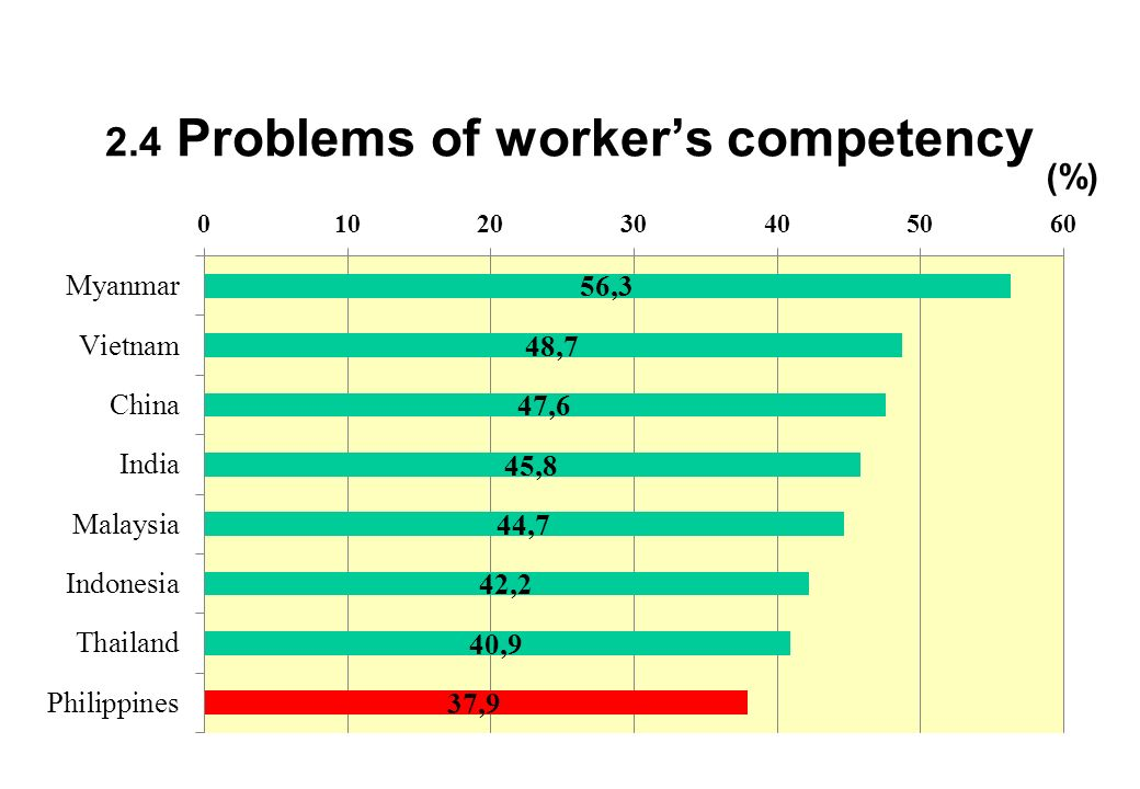 2.4 Problems of workers competency (%)
