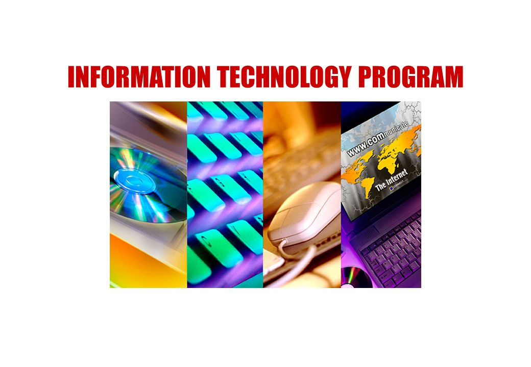 INFORMATION TECHNOLOGY PROGRAM