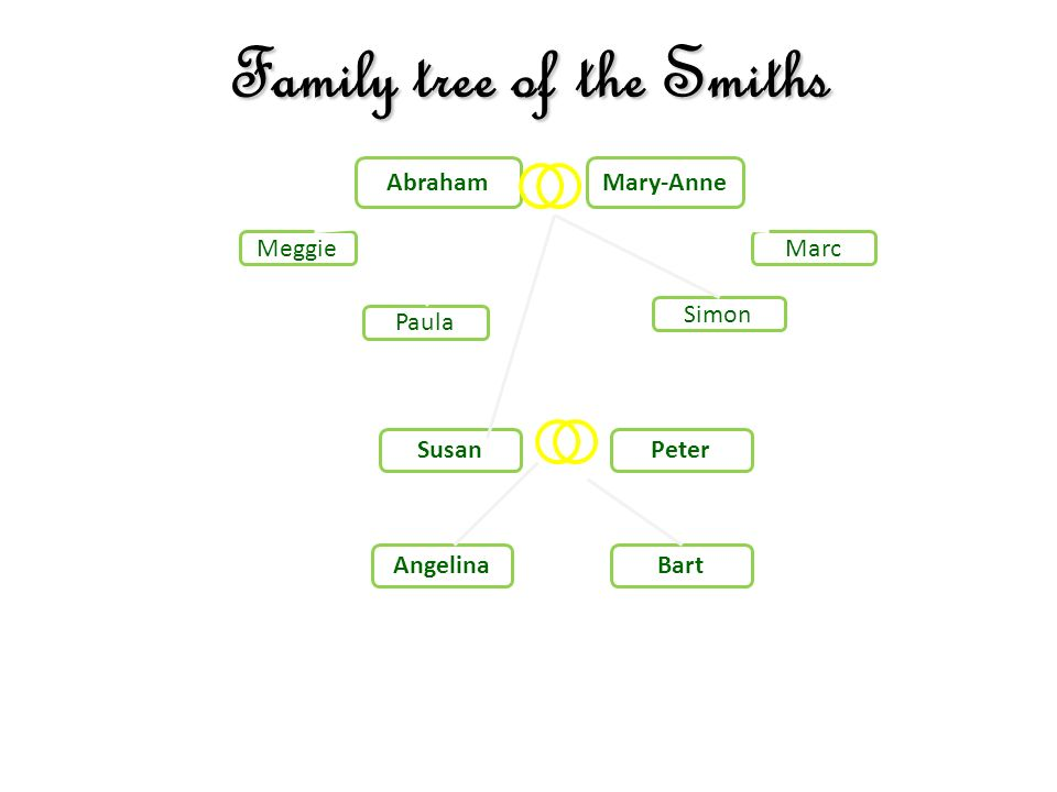 Family tree of the Smiths AbrahamMary-Anne Marc Susan Paula Peter Simon Meggie AngelinaBart