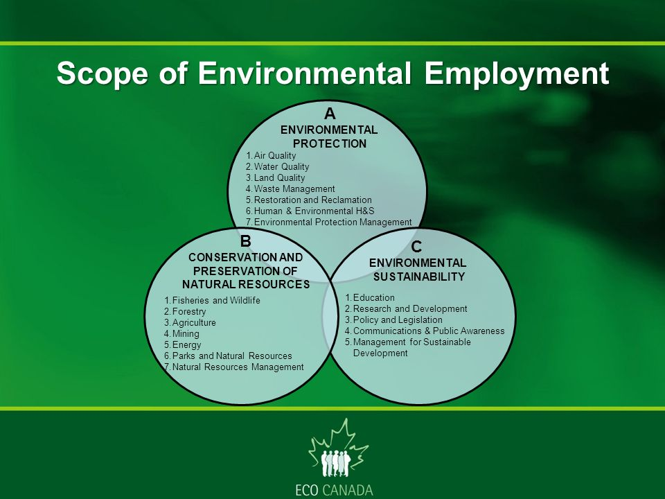 A ENVIRONMENTAL PROTECTION 1.Air Quality 2.Water Quality 3.Land Quality 4.Waste Management 5.Restoration and Reclamation 6.Human & Environmental H&S 7.Environmental Protection Management B CONSERVATION AND PRESERVATION OF NATURAL RESOURCES 1.Fisheries and Wildlife 2.Forestry 3.Agriculture 4.Mining 5.Energy 6.Parks and Natural Resources 7.Natural Resources Management C ENVIRONMENTAL SUSTAINABILITY 1.Education 2.Research and Development 3.Policy and Legislation 4.Communications & Public Awareness 5.Management for Sustainable Development Scope of Environmental Employment