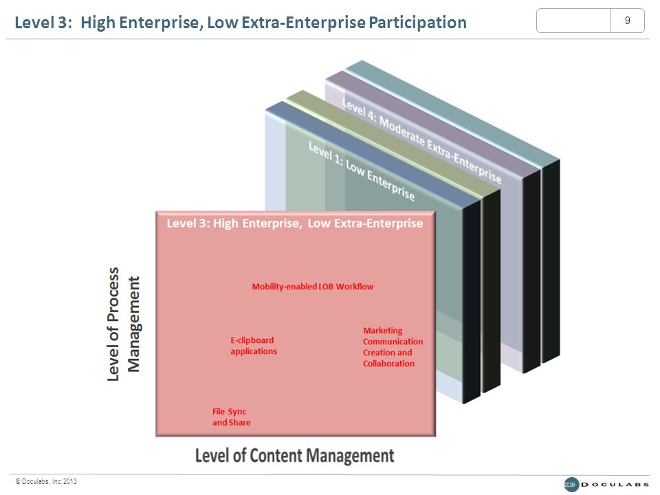 © Doculabs, Inc. 2013 Level 3: High Enterprise, Low Extra-Enterprise Participation 9